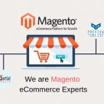 Magento Web Development  – Ecommerce Tool